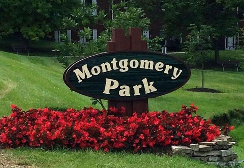 montgomery-content